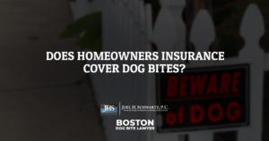 Does Homeowners Insurance Cover Dog Bites?