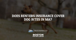 Does Renter's Insurance Cover Dog Bites in Ma?